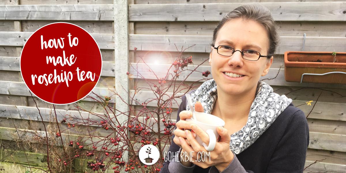 How to make rosehip tea?