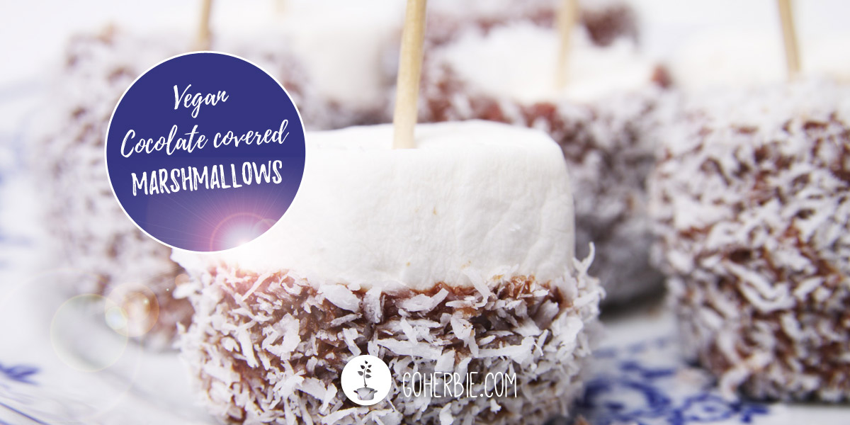 Chocolate covered marshmallows (DIY)