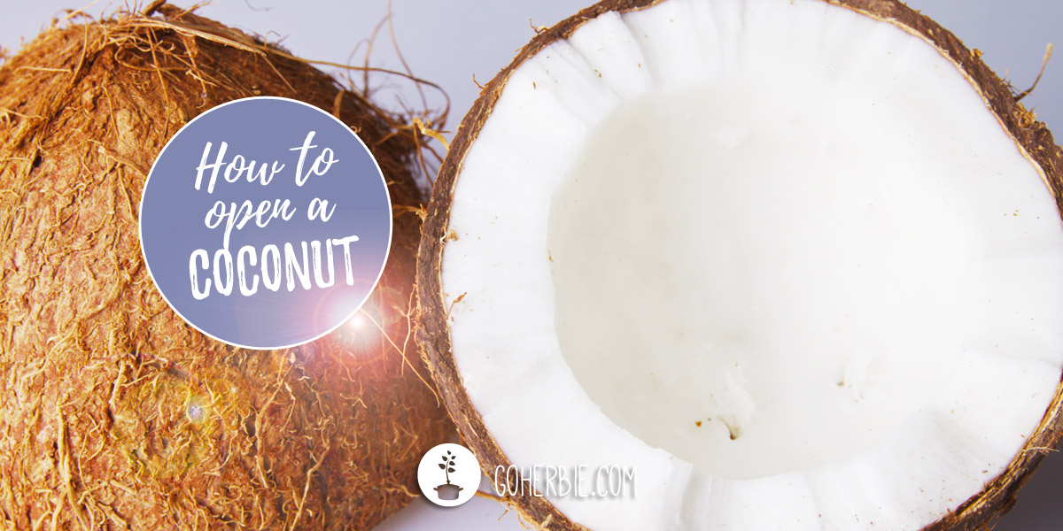 How to open a coconut? With tools you have at home.