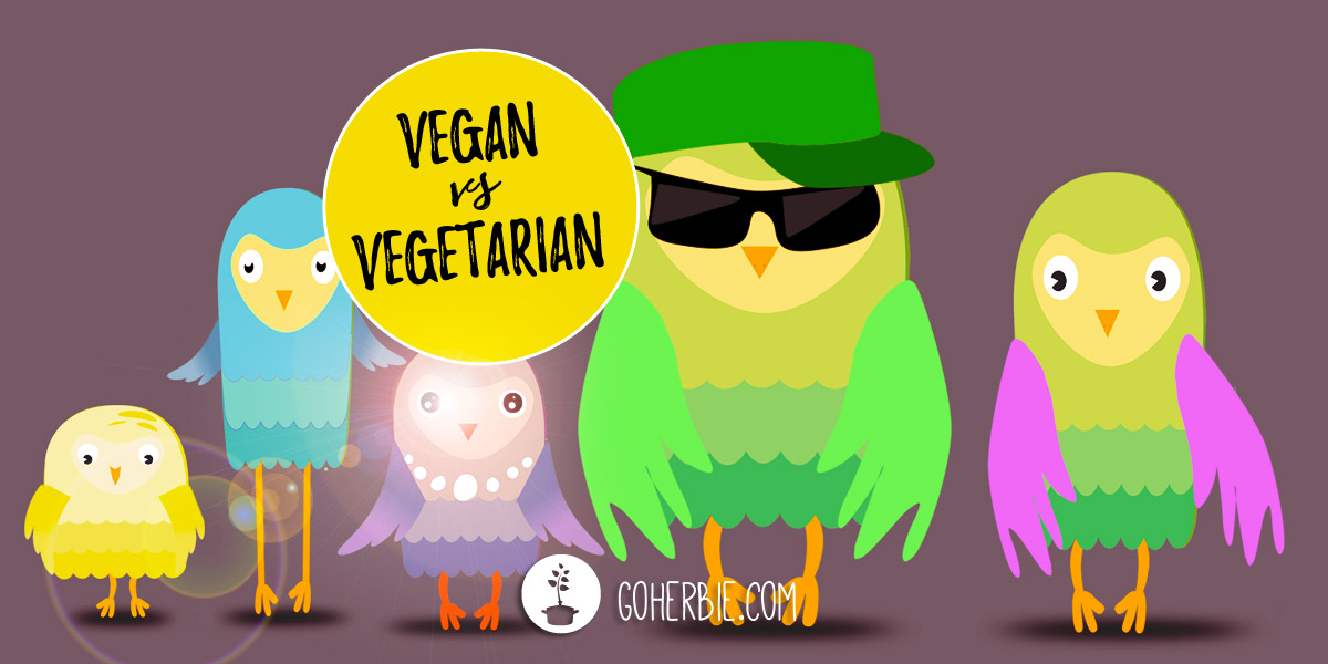 Vegan vs vegetarian – what's the difference