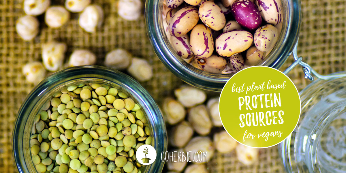 18 best plant based protein sources for vegans