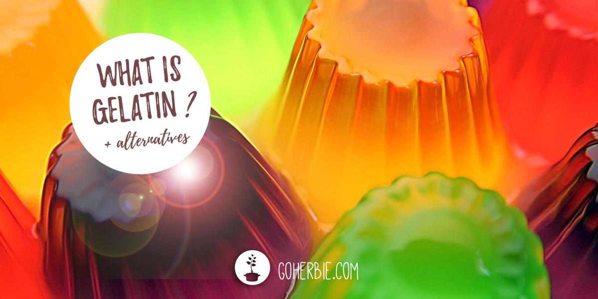 What is gelatin? + vegan alternative
