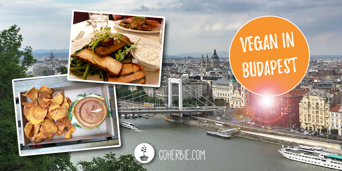 Vegan restaurants in Budapest