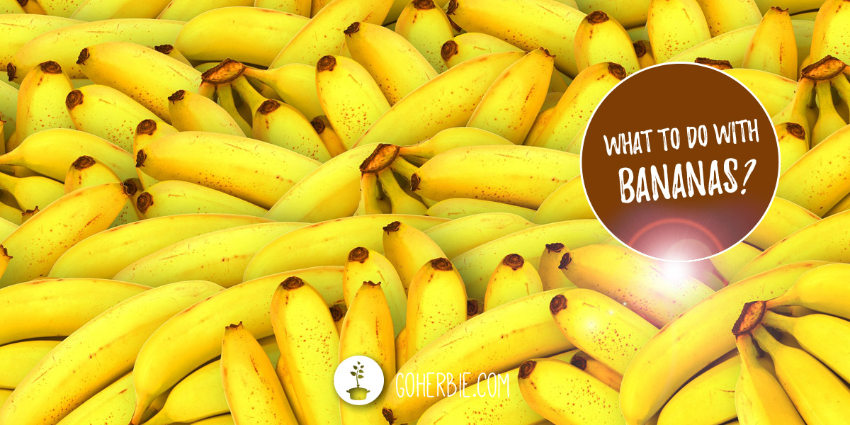 What to do with bananas? 15 ideas