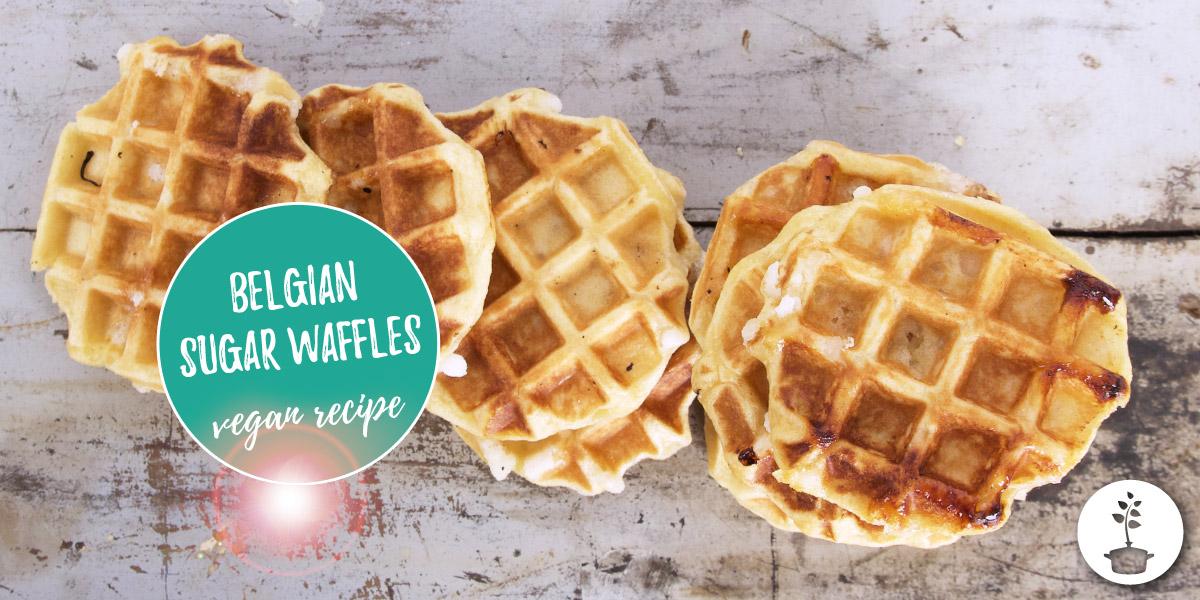 Belgian sugar waffles – vegan recipe