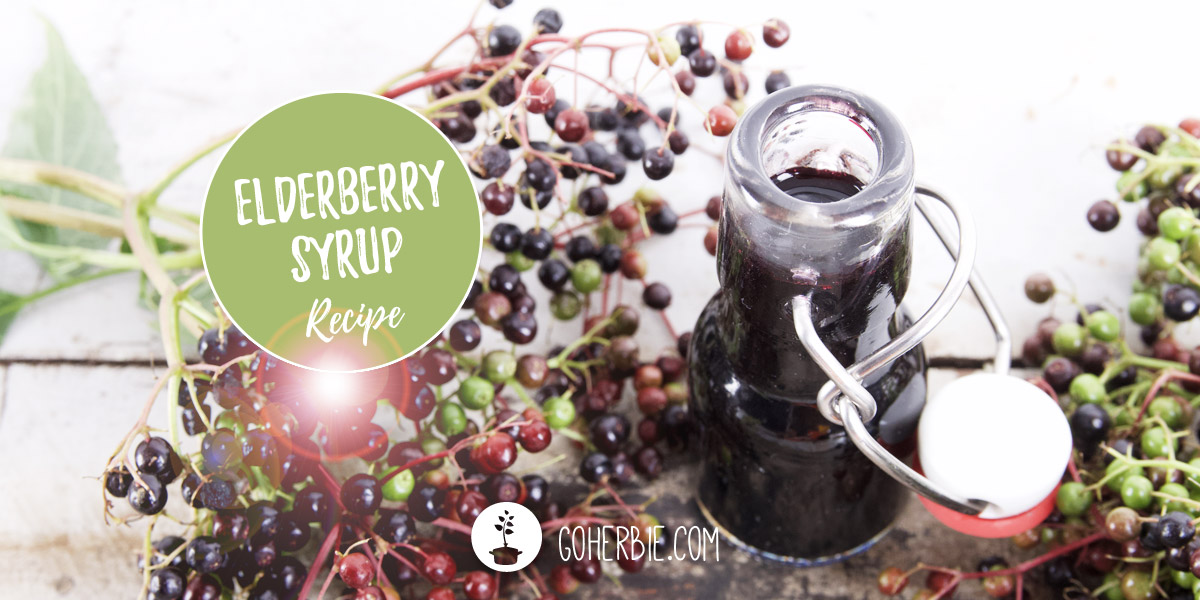 Elderberry syrup and elderberry juice – recipe for a resistance boost