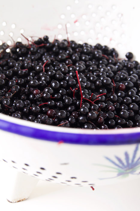Washing elderberries for making syrup