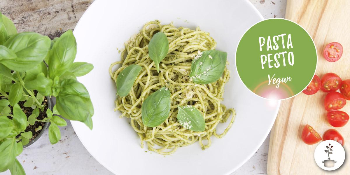 Vegan pasta pesto recipe (with basil)