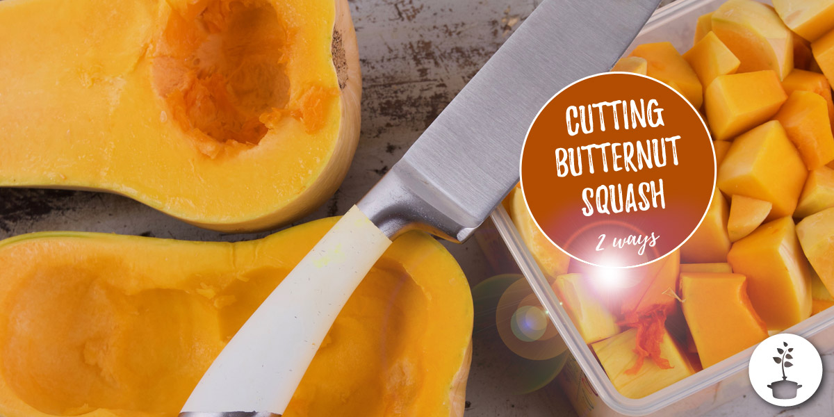 Peeling and cutting a butternut squash – howto