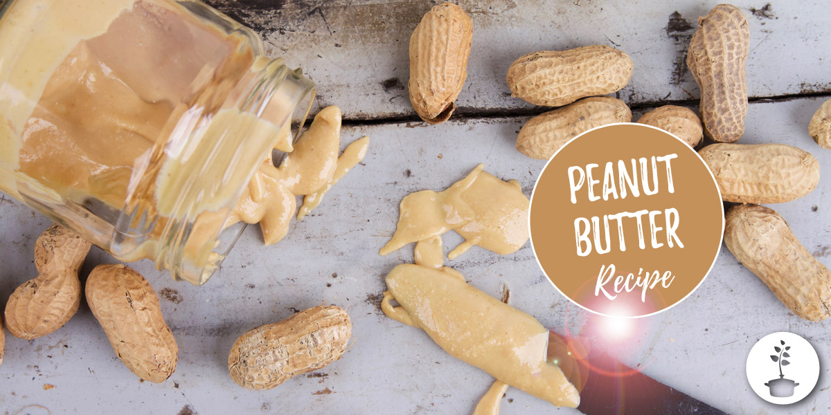 How to make peanut butter? Recipe