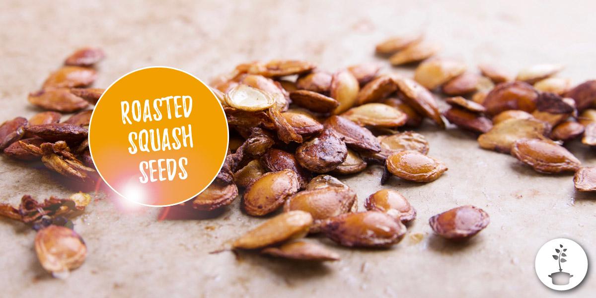How to roast squash seeds?